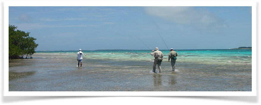 cfc7560560e9 Guide to Saltwater Fly Fishing the Flats - Rok Max