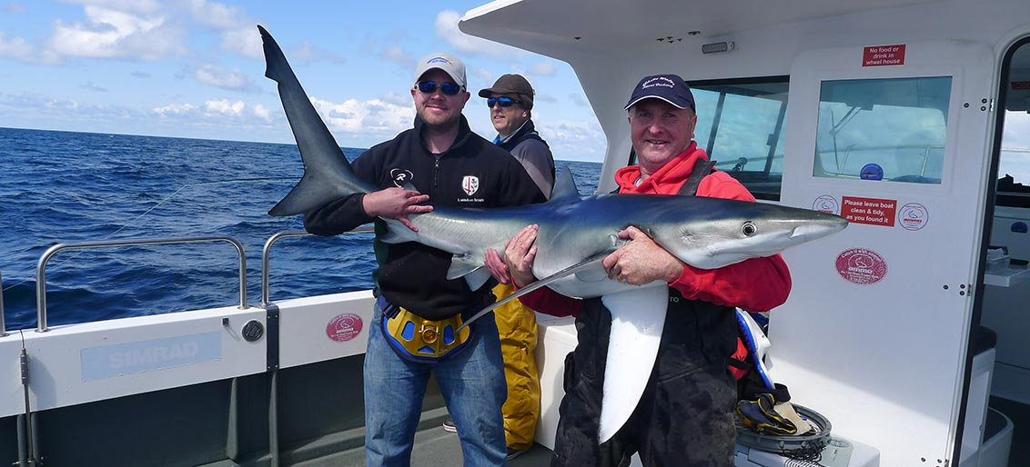 Shark Fishing for Beginners