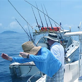 Boat Fishing Accessories