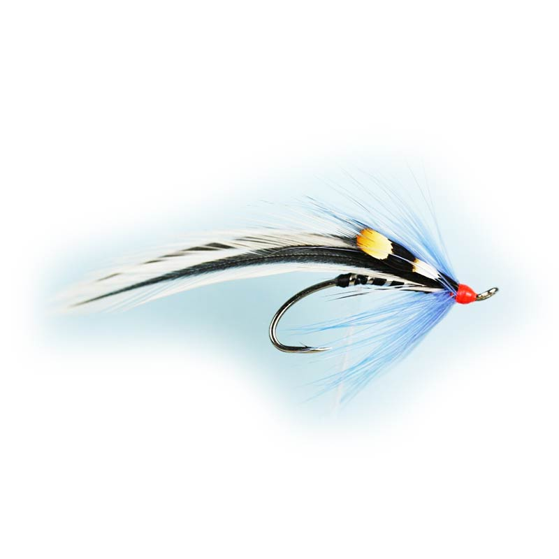 Caledonia Blue Elver Single Fly